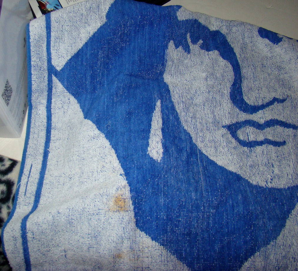 Liberty Towel old damaged (4)